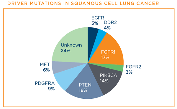 Driver mutations in squamous cell lung cancer