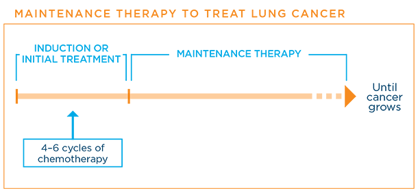 Maintenance therapy schedule for lung cancer