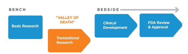 Translating research from bench to bedside